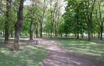 Bieganie, Trasy i ścieżki Biegowe