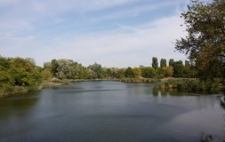 Jeziorko Szczęśliwice